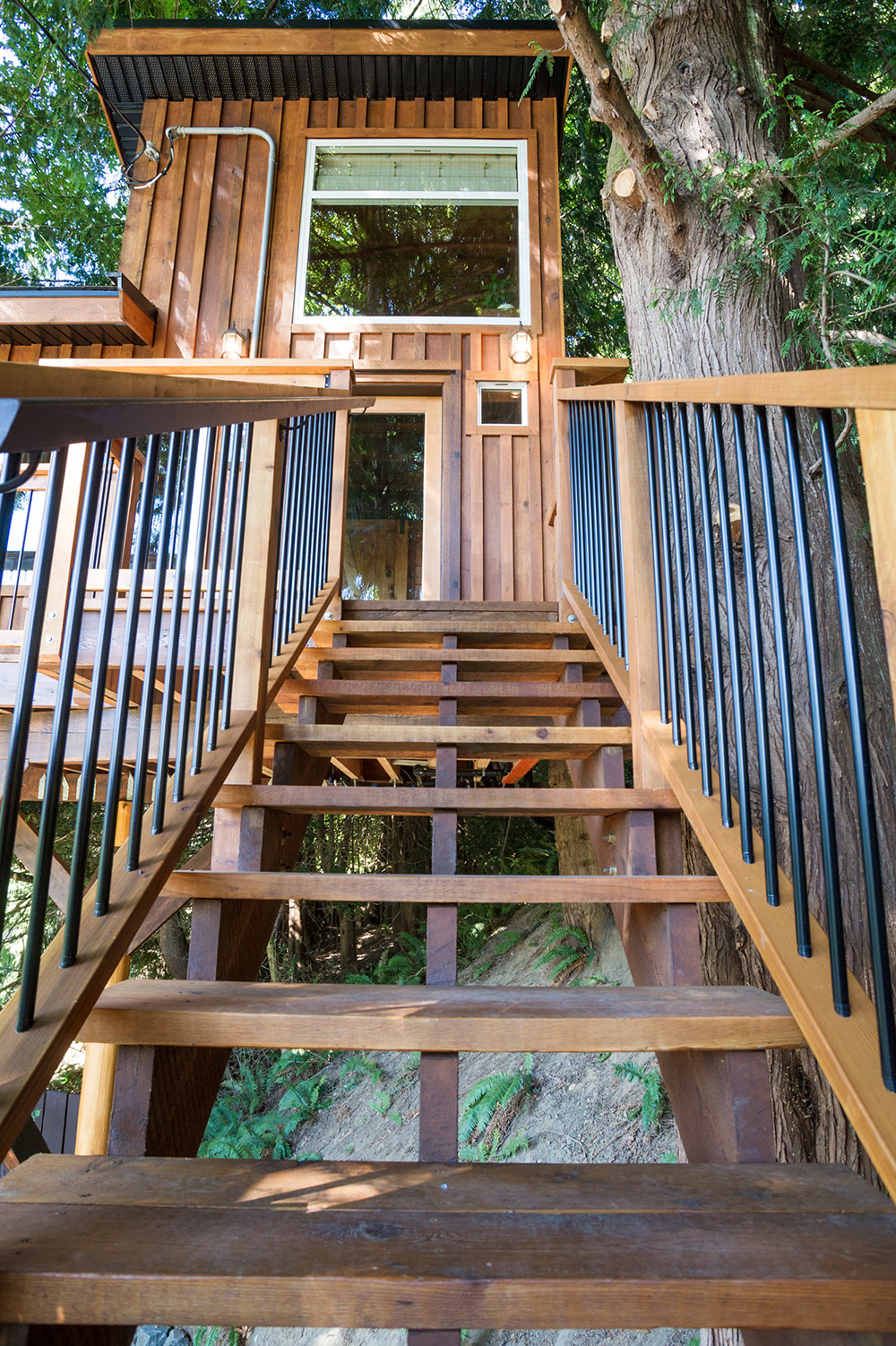Sooke Treehouse